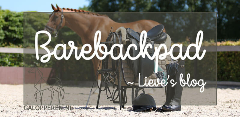 barebackpad