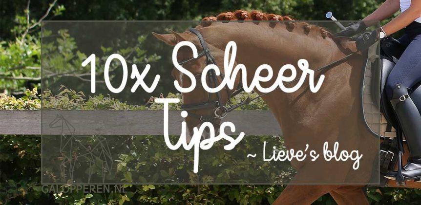 10x-scheer-tips-paard-Galopperen